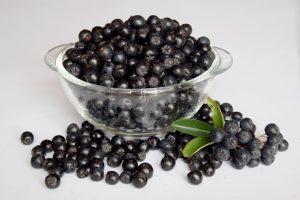 aronija, ubija teške metale u telu, antioksidans, protivupalno, hrana, želudac