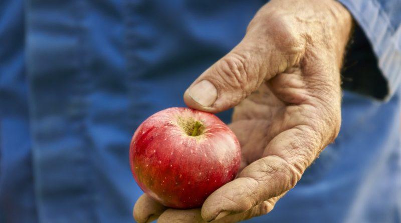 Anemija, malokrvnost, gvožđe, jabuka, ekser, lečenje, med, limun